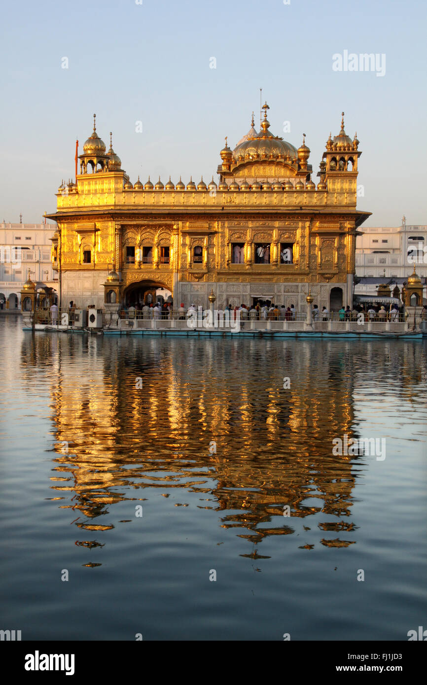 Golden sanctuary of the Golden temple, Amritsar , India - Stock Image