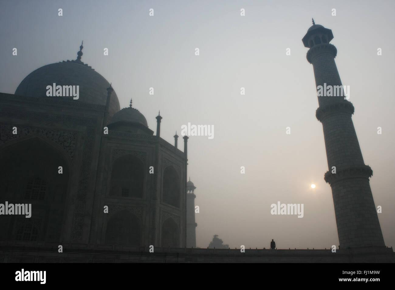 Taj Mahal in the early morning, Agra India - Stock Image