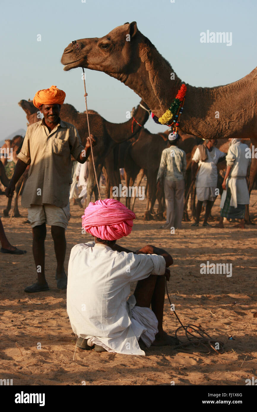 Two camel owners with colorful turbans are talking during Pushkar mela , Rajasthan - Stock Image