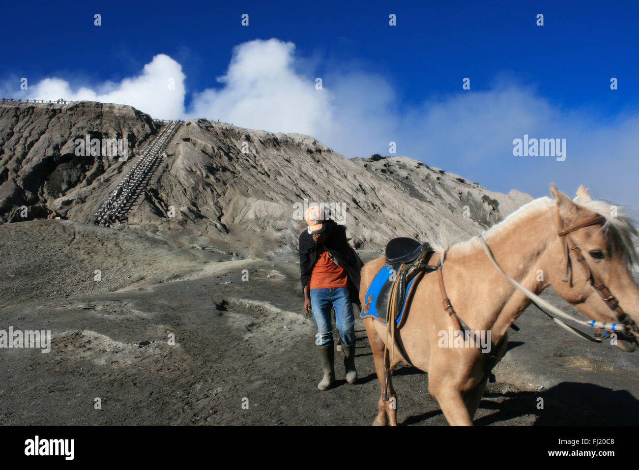 Man with horse near Mount Bromo , Java , Indonesia - Stock Image