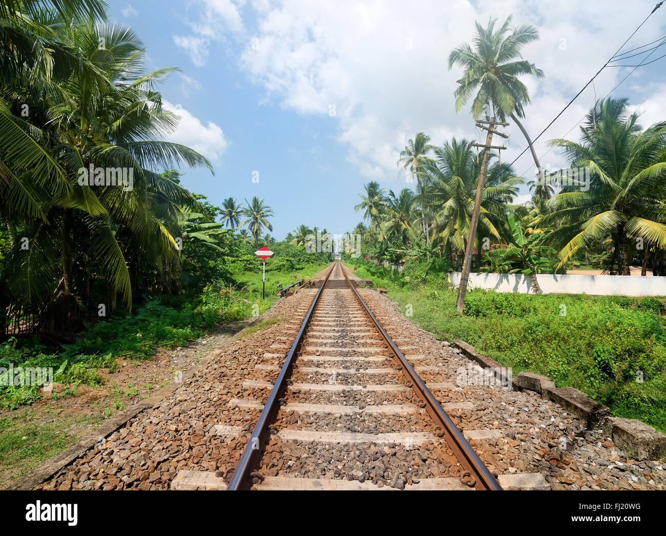 Sign near railroad in jungles of Sri Lanka - Stock Image