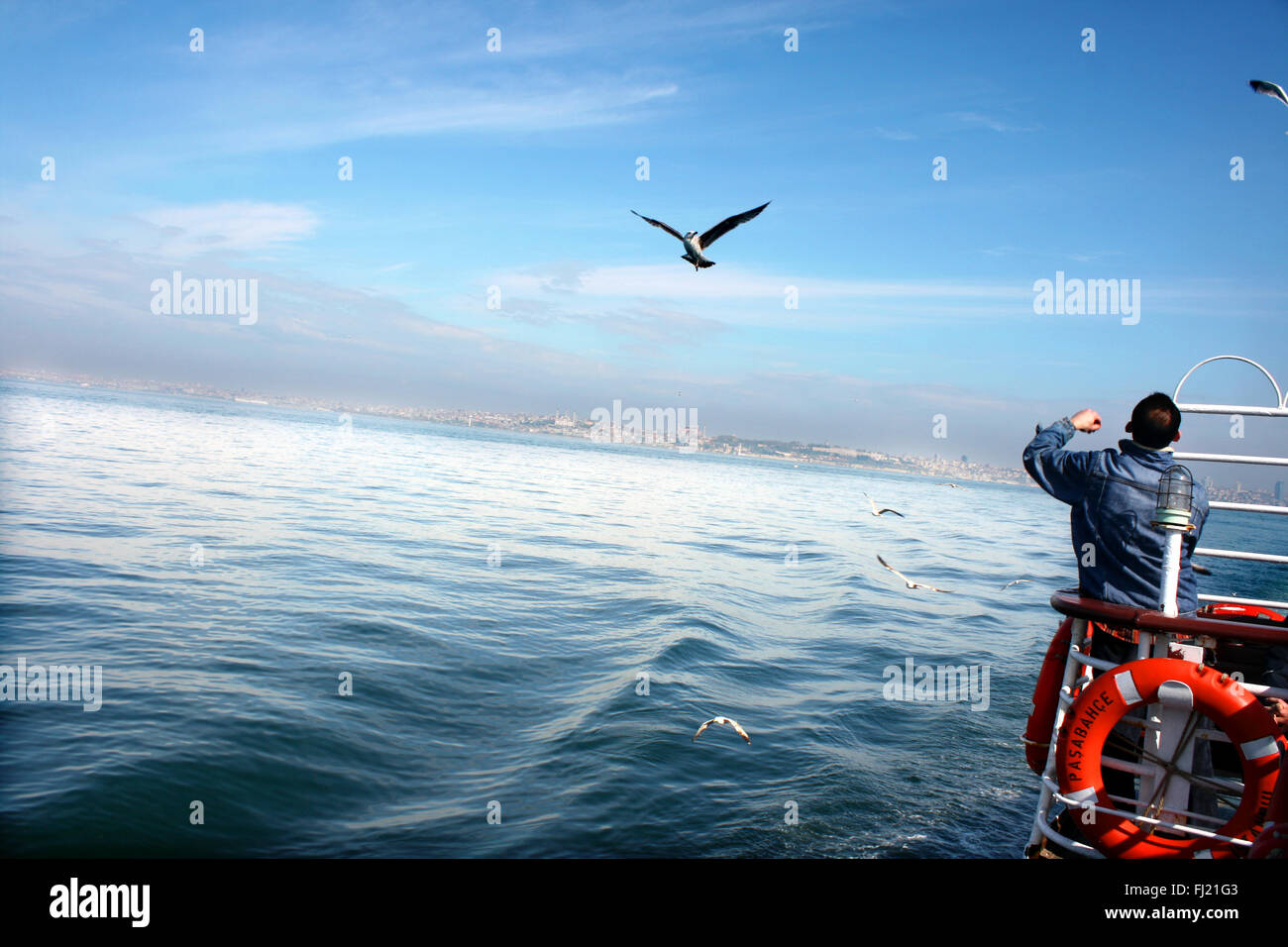 A man travels on boat with birds on the Bosphorus river , Istanbul - Stock Image