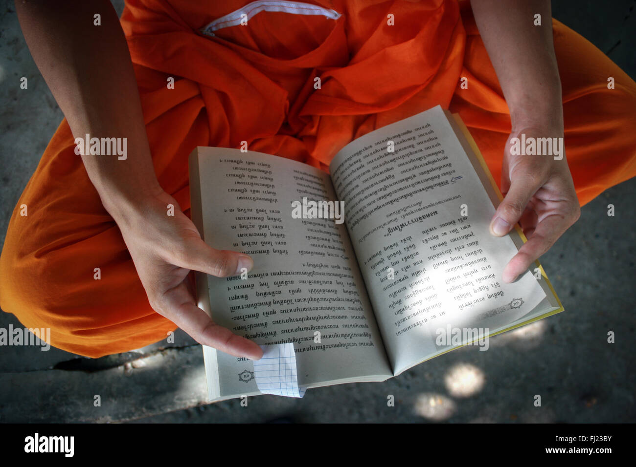 Buddhist monk reading in monastery  in Luang Prabang , Laos, Asia - Stock Image