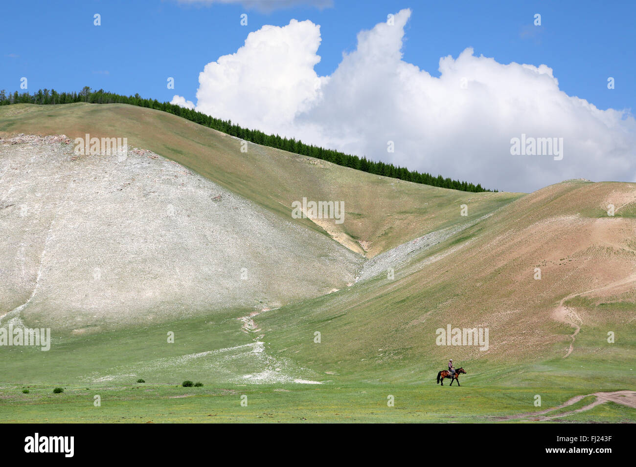 Mongolia stunning landscapes made of total green and emptiness - Stock Image