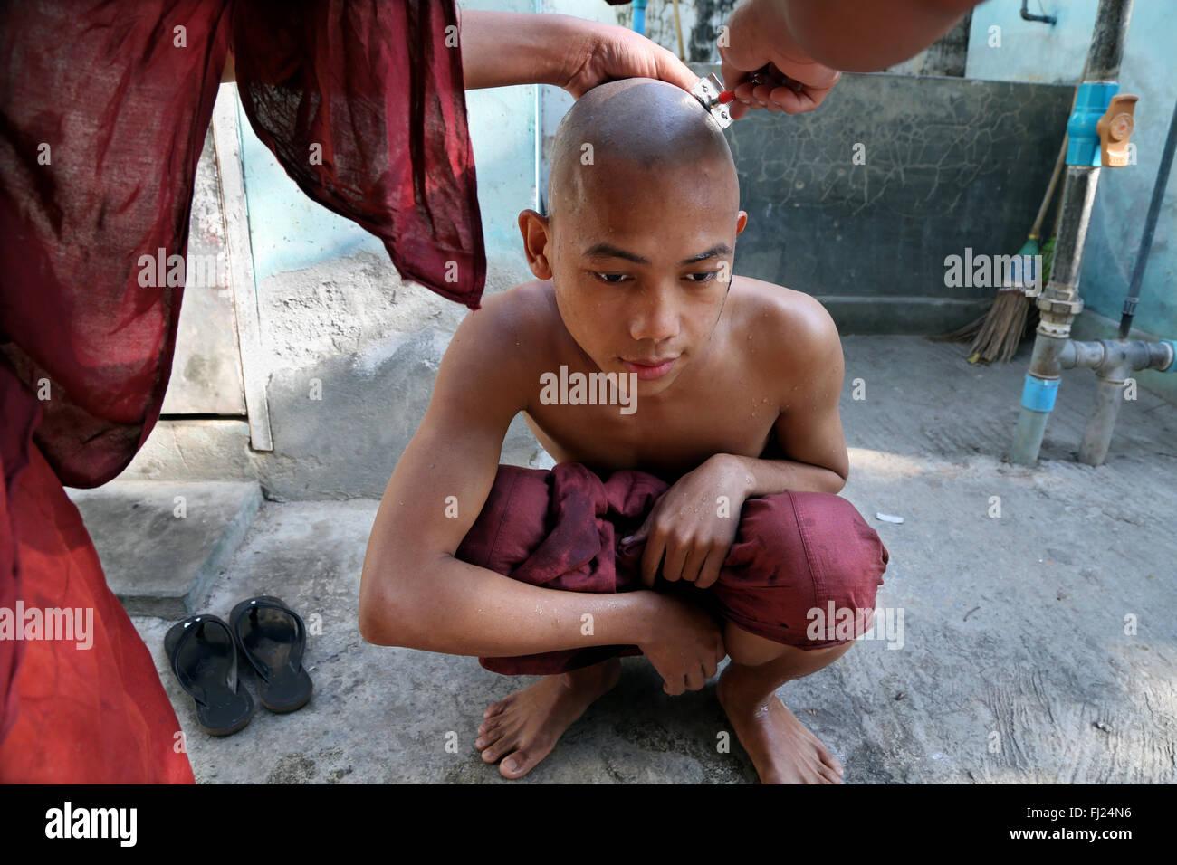 Buddhist monk being shaved at monastery in Amarapura, tonsure ritual ,  Myanmar Stock Photo