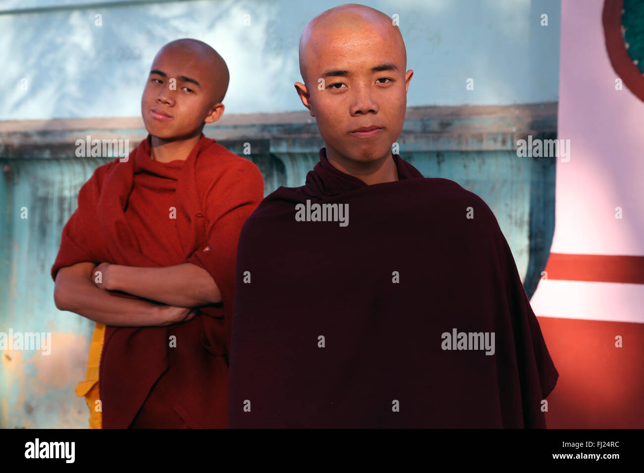 Portrait of bald buddhist monks, Myanmar - Stock Image
