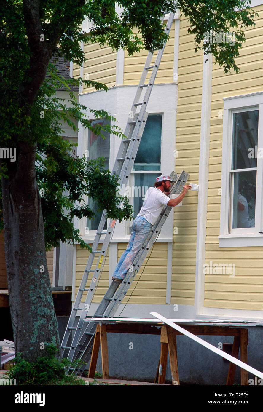 Professional painter on ladder painting historical house, Charleston, South Carolina, USA - Stock Image