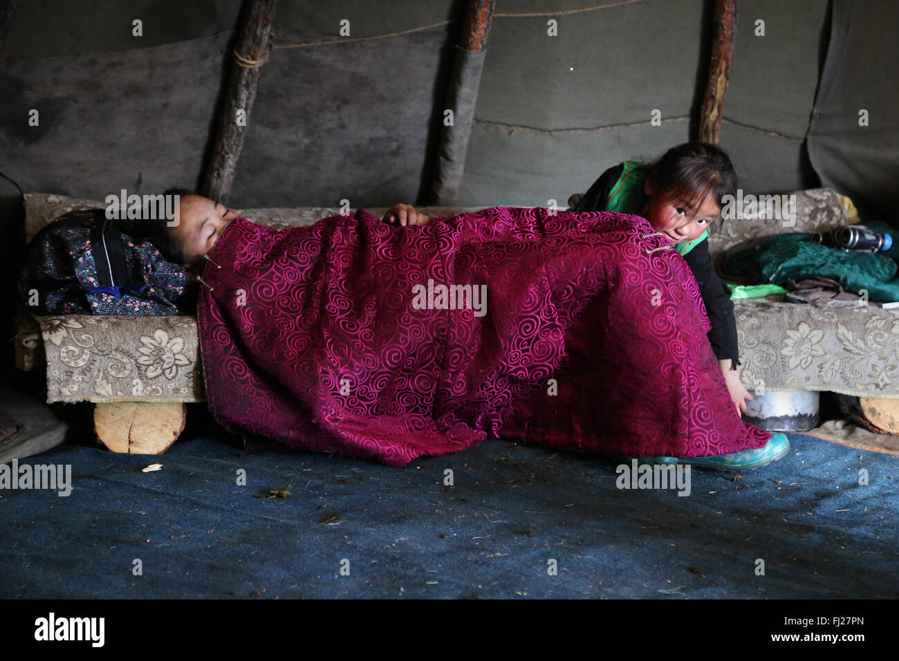 Faily in the ger, , Tsaatan Dukha people , nomadic reindeer herders , Mongolia - Stock Image