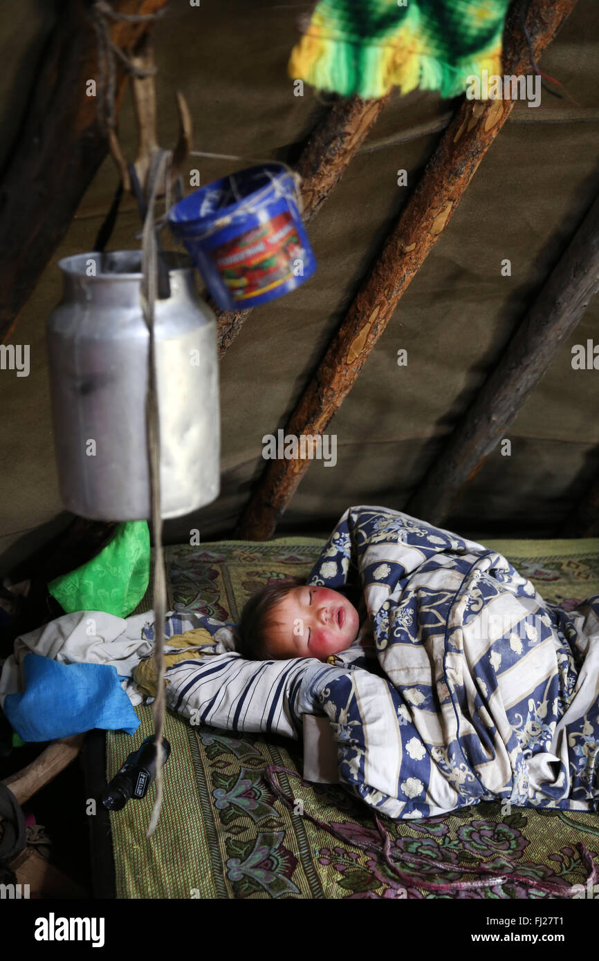 Baby sleeping inside tent, , Tsaatan Dukha people , nomadic reindeer herders , Mongolia - Stock Image