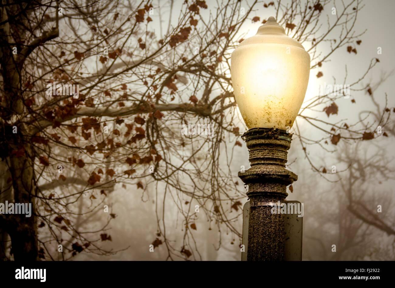 Hollywood Streetlamp, Morning fog - Stock Image