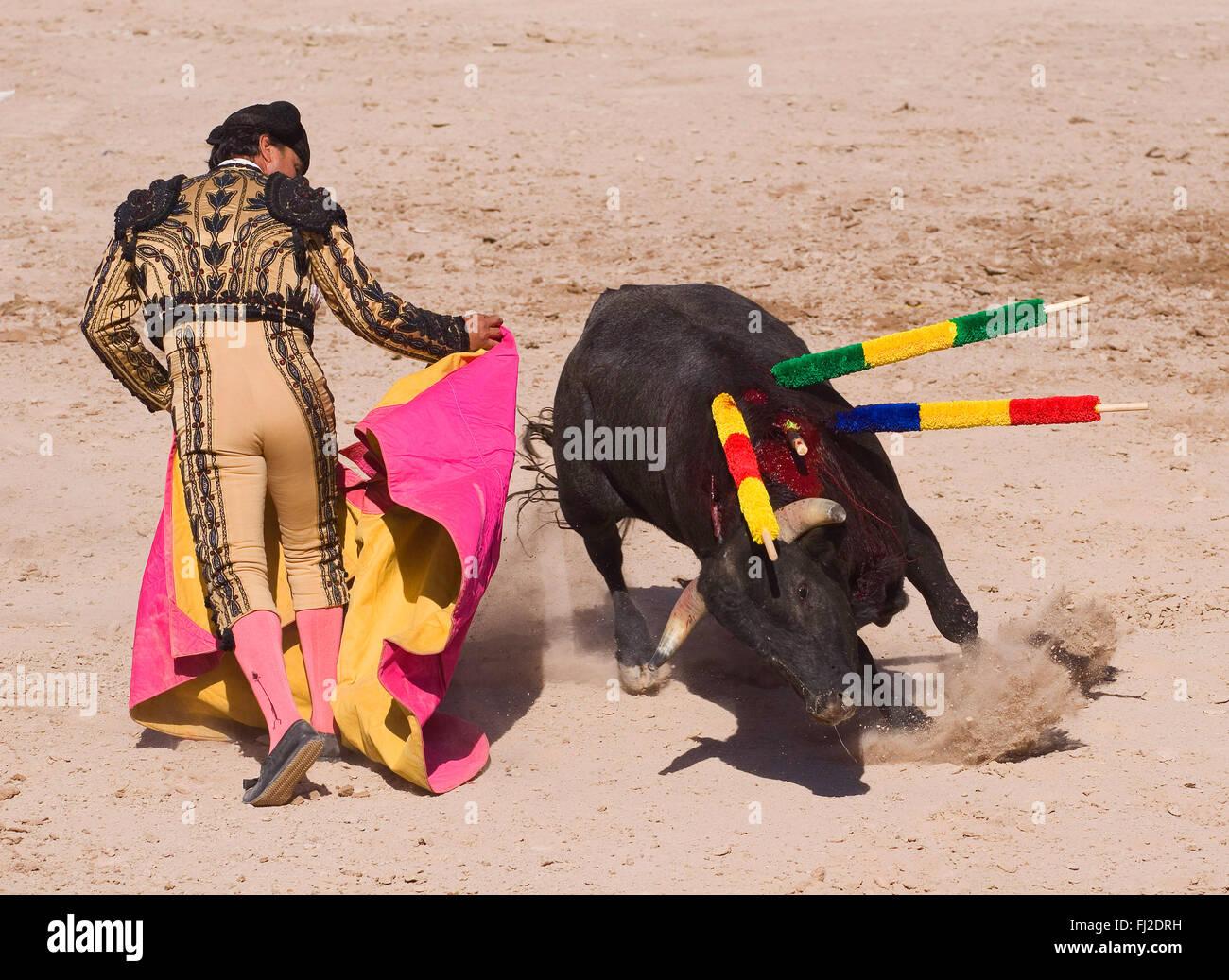 a58537343a9 A MATADOR at a bull fight in the Plaza de Toros - SAN MIGUEL DE ALLENDE