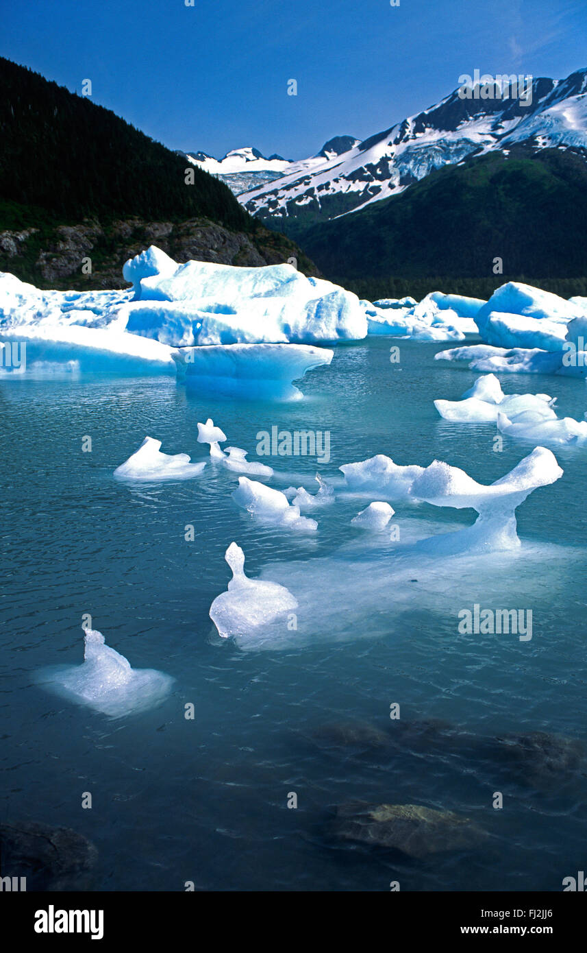 PORTAGE LAKE and GLACIER - KENAI PENINSULA - ALASKA - Stock Image