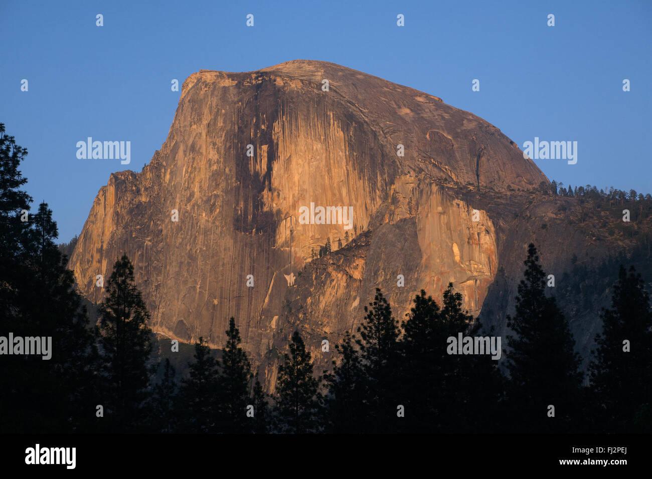 HALF DOME glows warmly at sunset - YOSEMITE NATIONAL PARK, CALIFORNIA - Stock Image