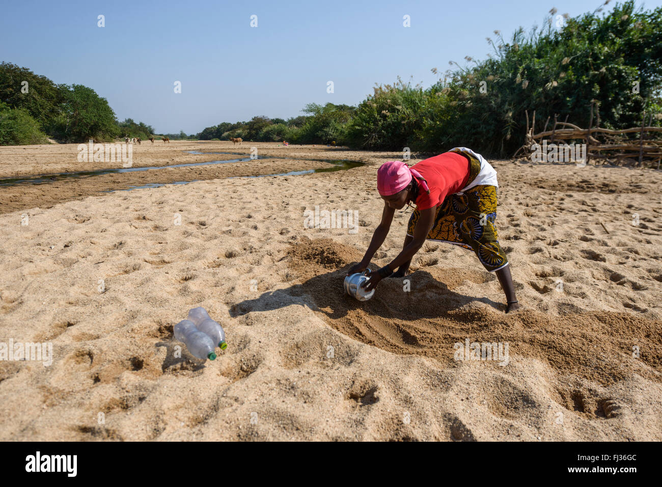 Searching for water, Angola, Africa - Stock Image