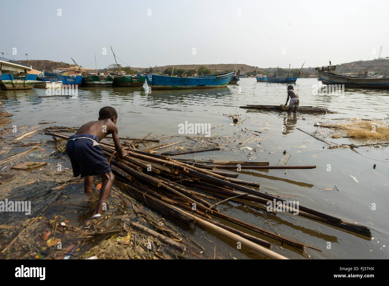 Boys gather wood, Angola, Africa - Stock Image