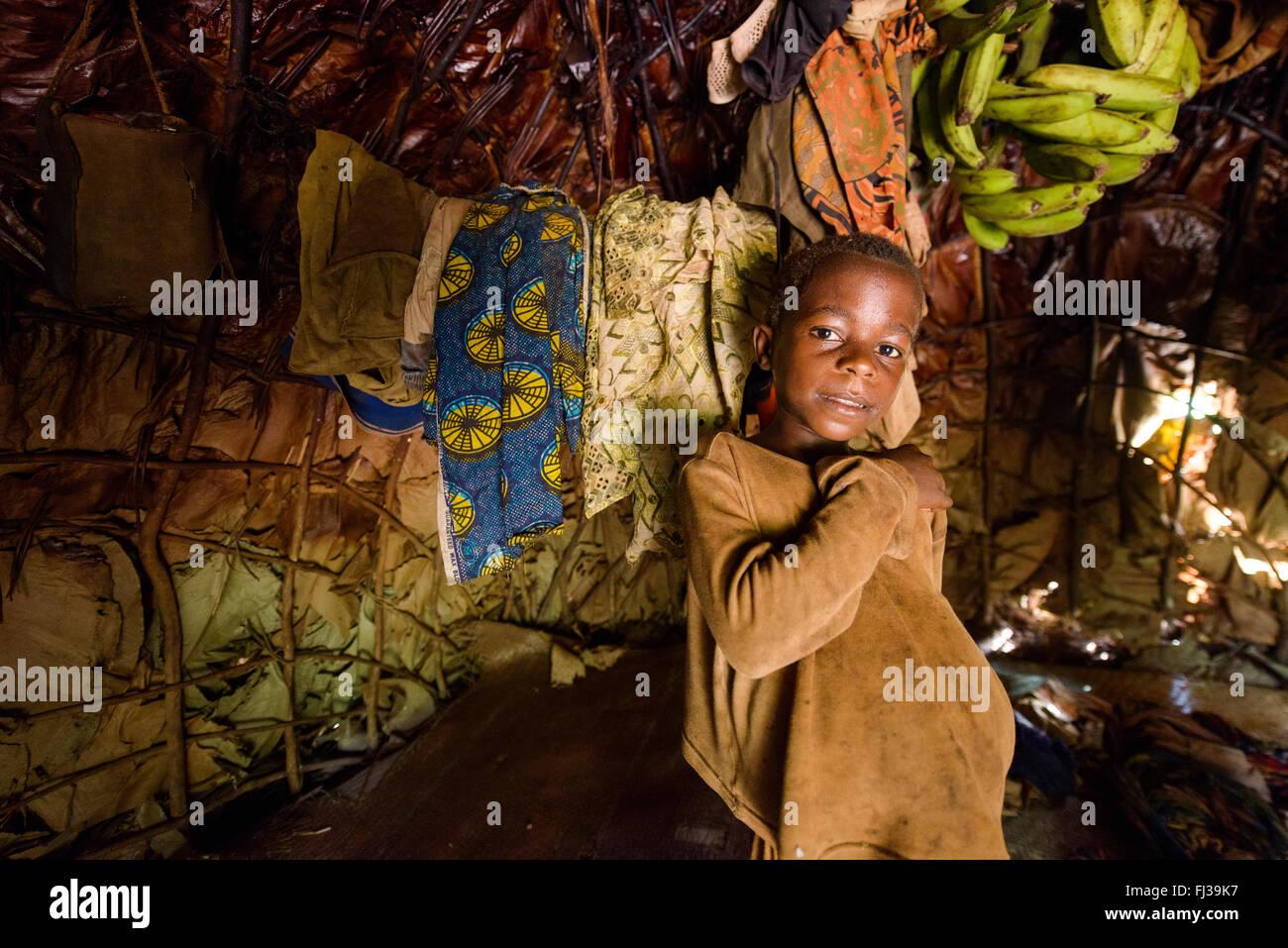 Baka pymys, Cameroon, Africa - Stock Image