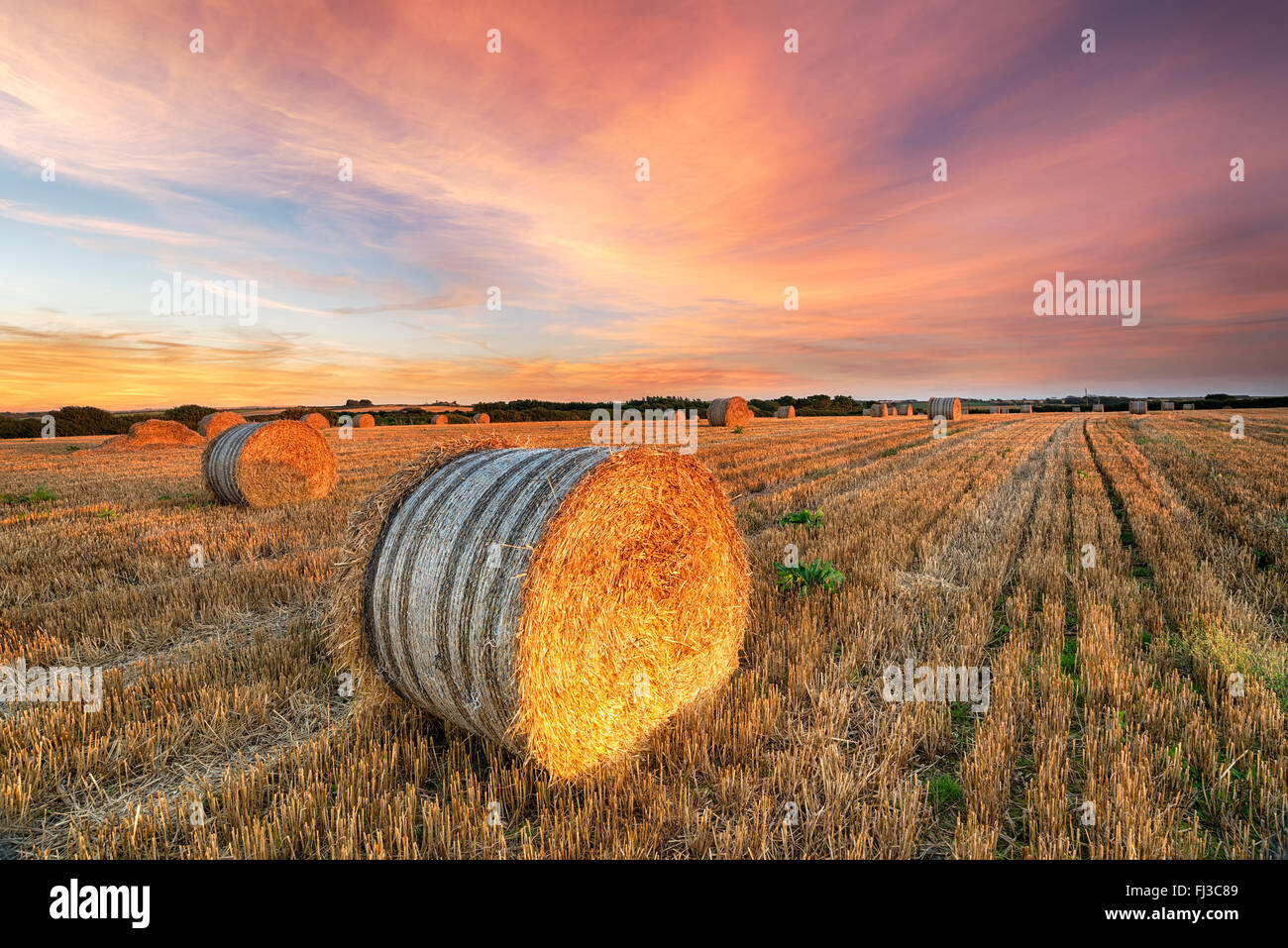 Beautiful sunset over a field of hay bales near Newquay in Cornwall - Stock Image