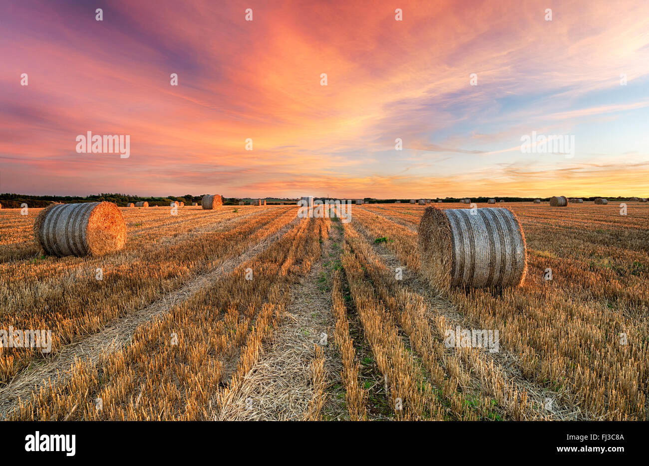 Stunning sunset over hay bales near Crantock in Cornwall - Stock Image