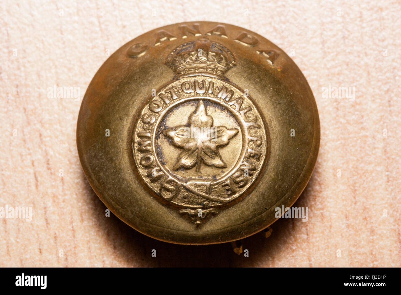 First world war, the great war. Regalia. British army tunic button on wood grain background. Maple leaf. Canada Stock Photo