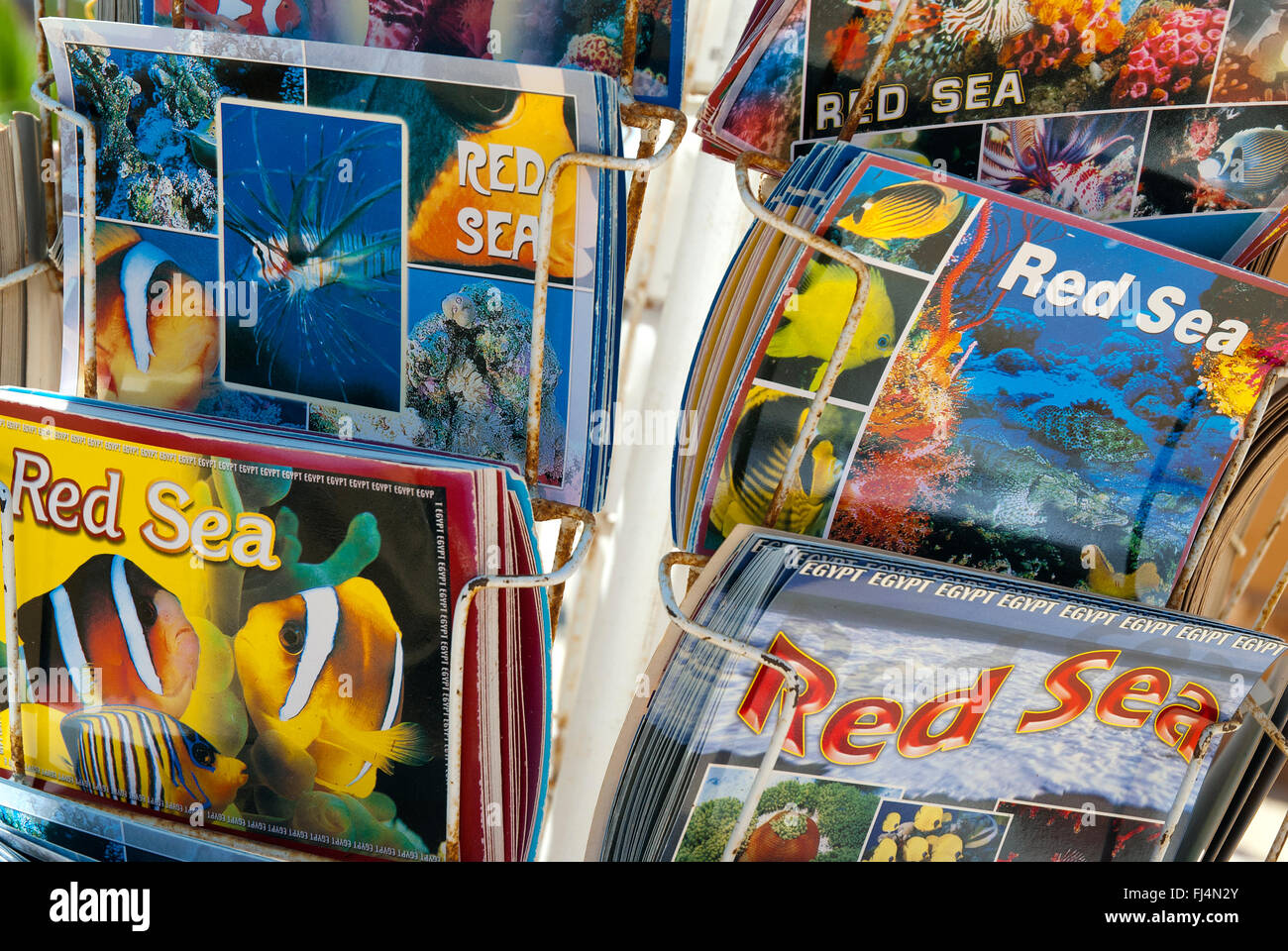 Postcards, Red Sea, Egypt - Stock Image