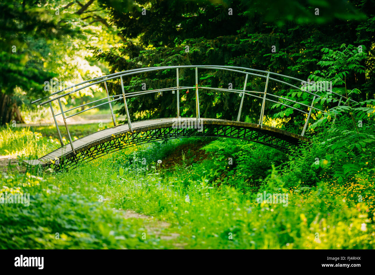 Beautiful old small decorative bridge in summer garden park forest on summer garage design, summer house design, simplicity design, summer pool design, summer stage design, summer fruit design, summer interior design, peony design, summer shoes design, sunset design, summer quilt design, summer border design, summer abstract background design, books design, family design, fall design, summer holidays design, summer outdoor design, summer beach design, summer graphic design,