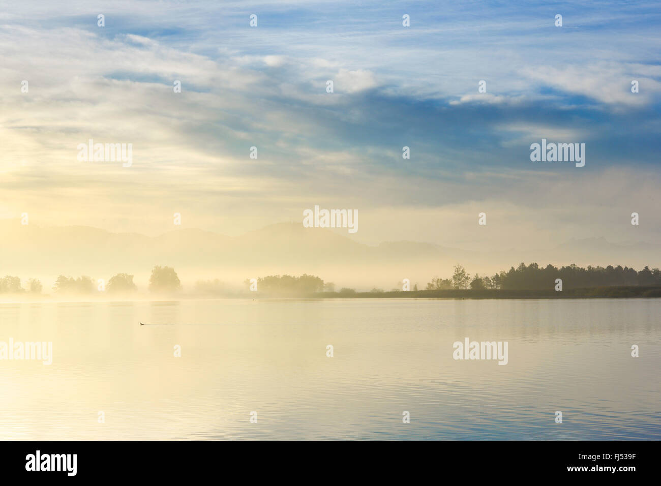 Lake Pfaeffikon in morning mood, Switzerland, Zuercher Oberland - Stock Image