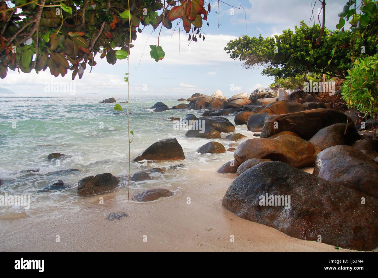 rocky coast, Seychelles, Mahe, Beau Vallon - Stock Image