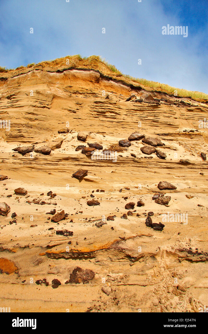 wind erosion at a North Sea dune, Denmark, Juetland, Thy National Park - Stock Image