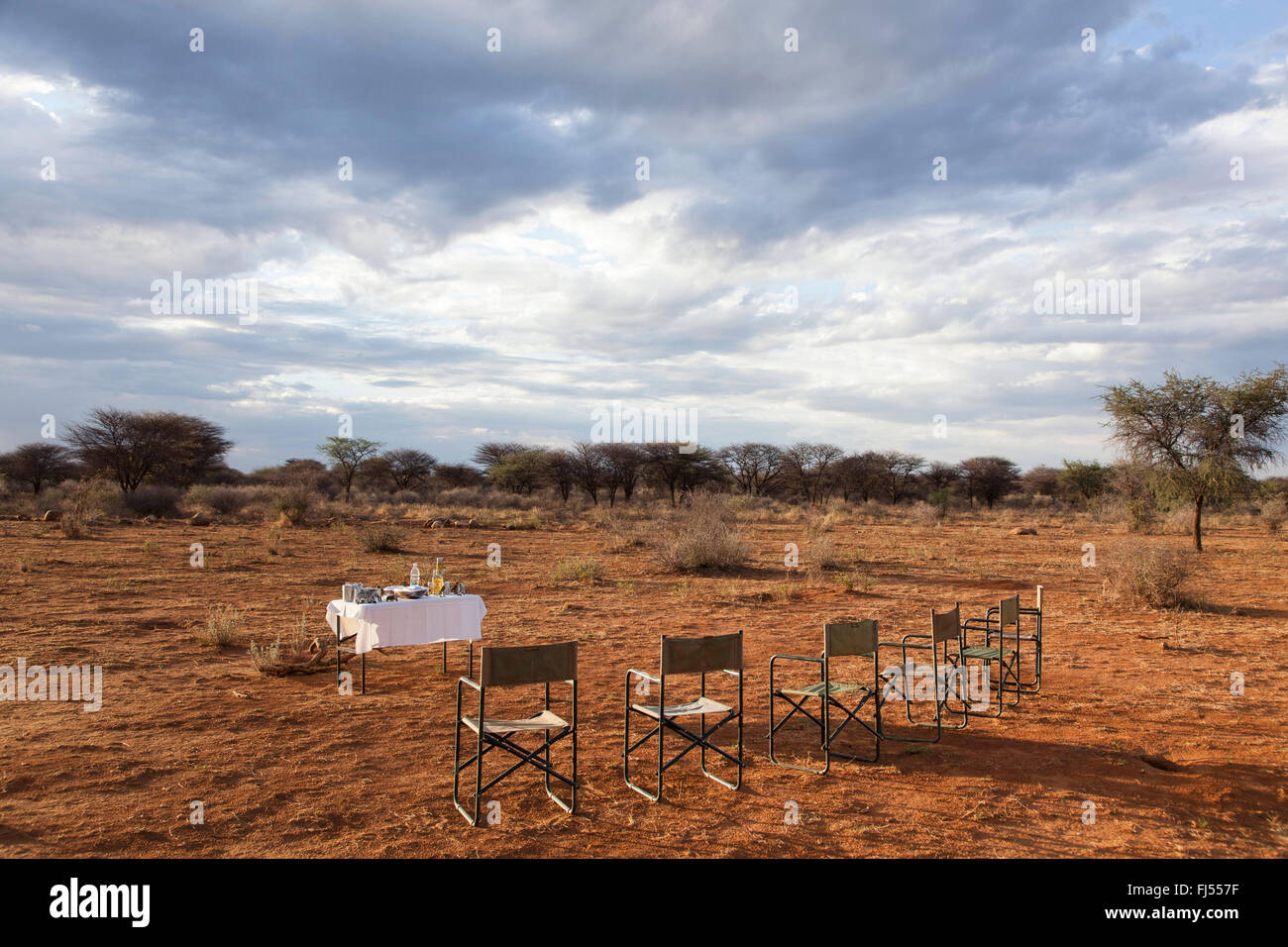 covered table and row of chairs in shrubland in the evening, Namibia, Okahandja - Stock Image