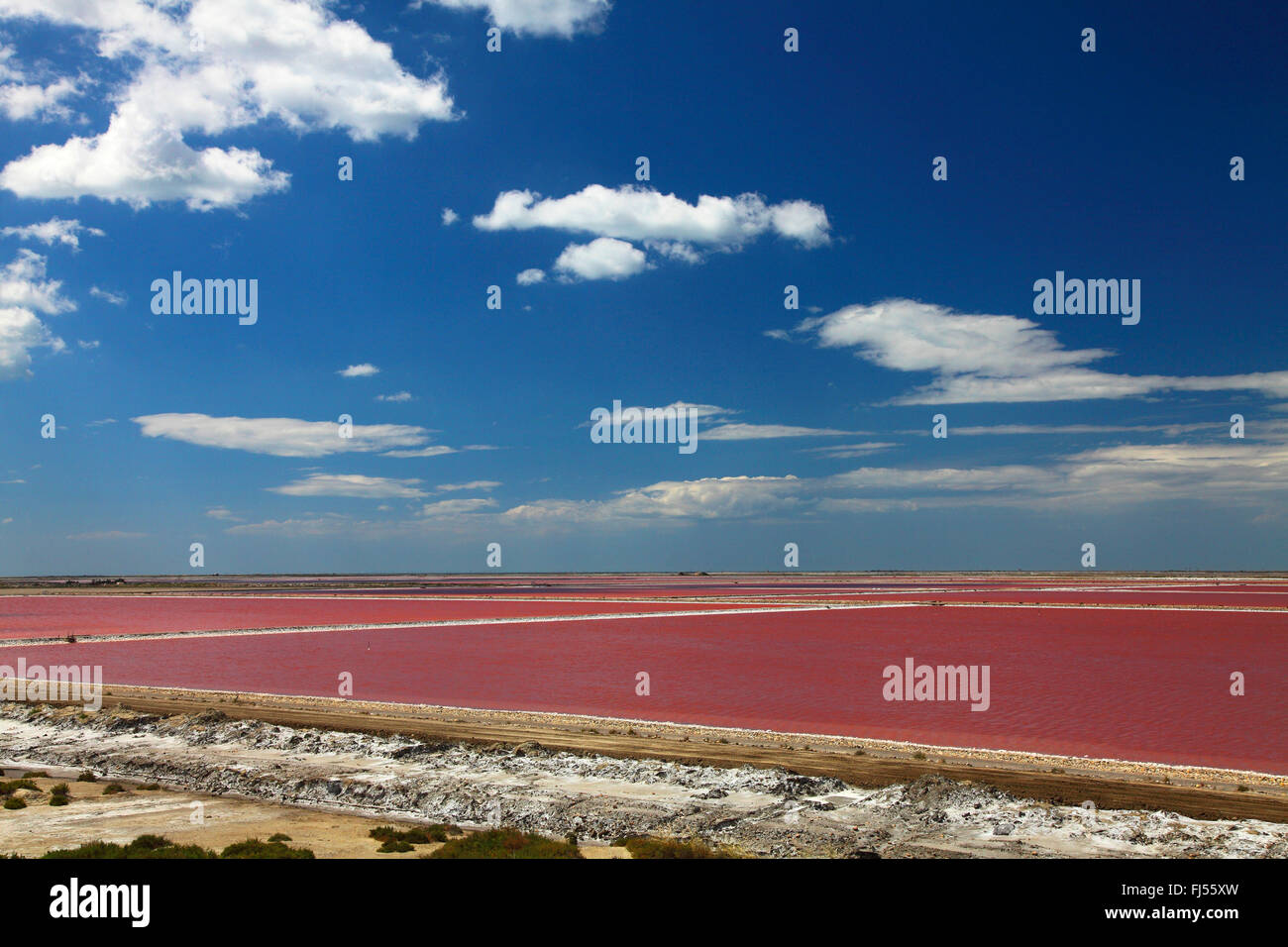 microorganisms change the colour to red of salt evaporation ponds of a saline near Salin de Giraud, France, Camargue - Stock Image