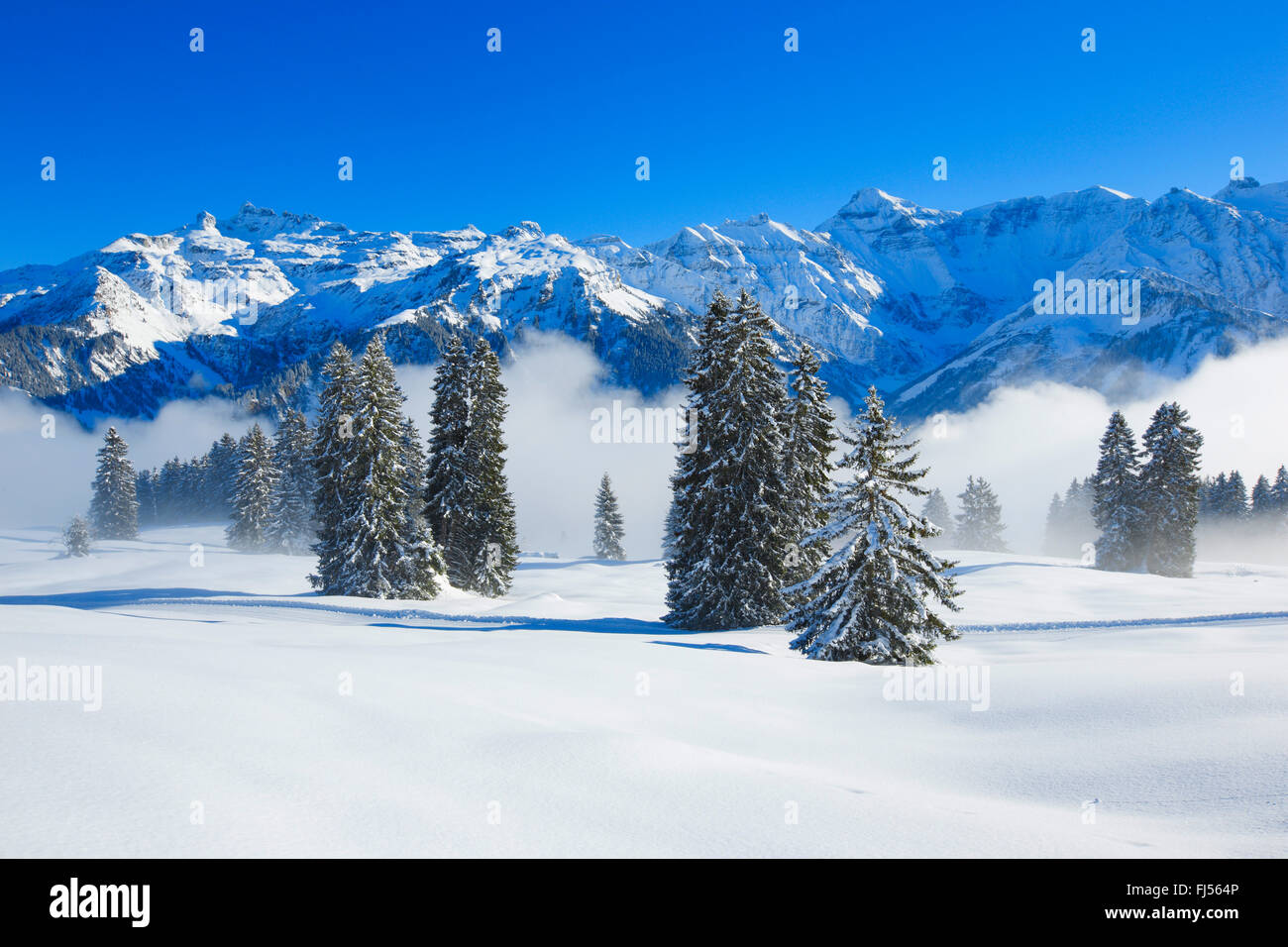 Freiberge Kaerpf at the Wallis Alps, Switzerland - Stock Image