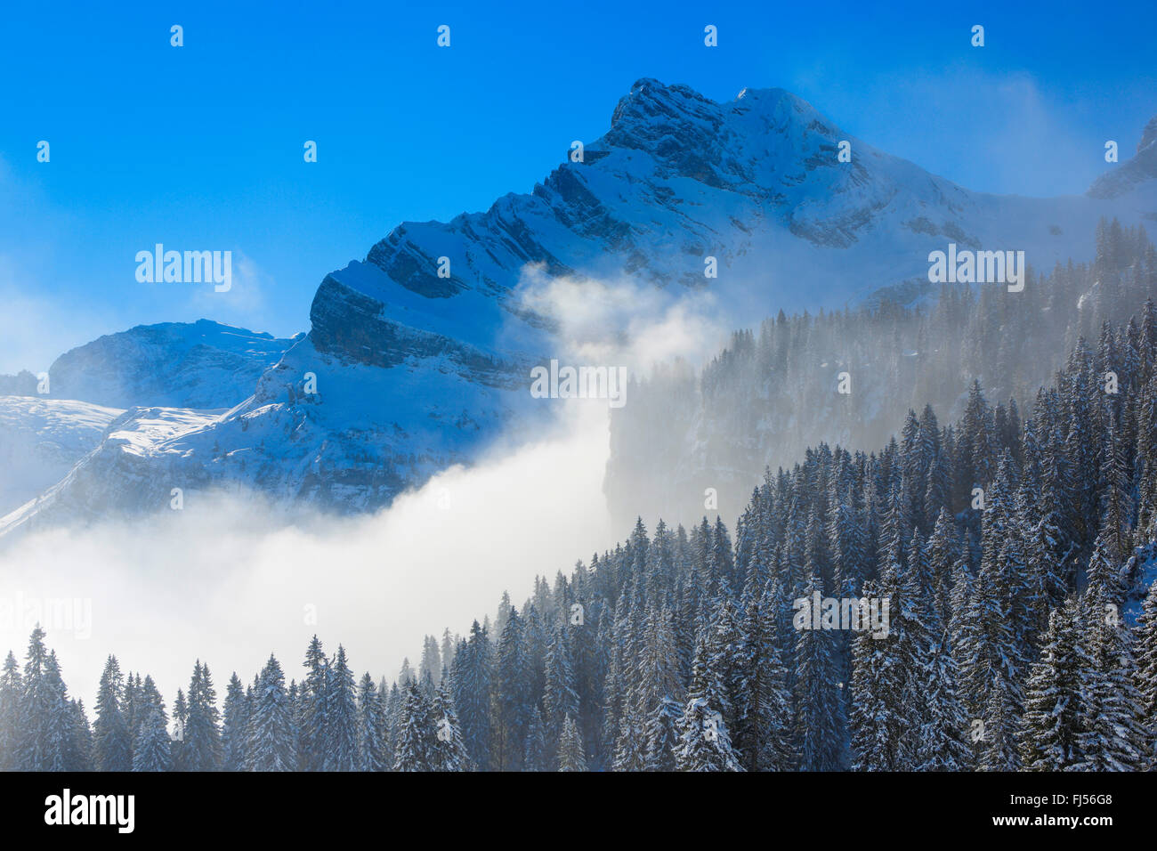 Ortstock at the Wallis Alps, Switzerland - Stock Image