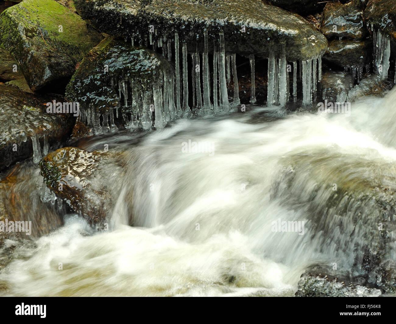 running water in rocky creek freezing up, Germany, Saxony, Erz Mountains, Schwarzwassertal - Stock Image