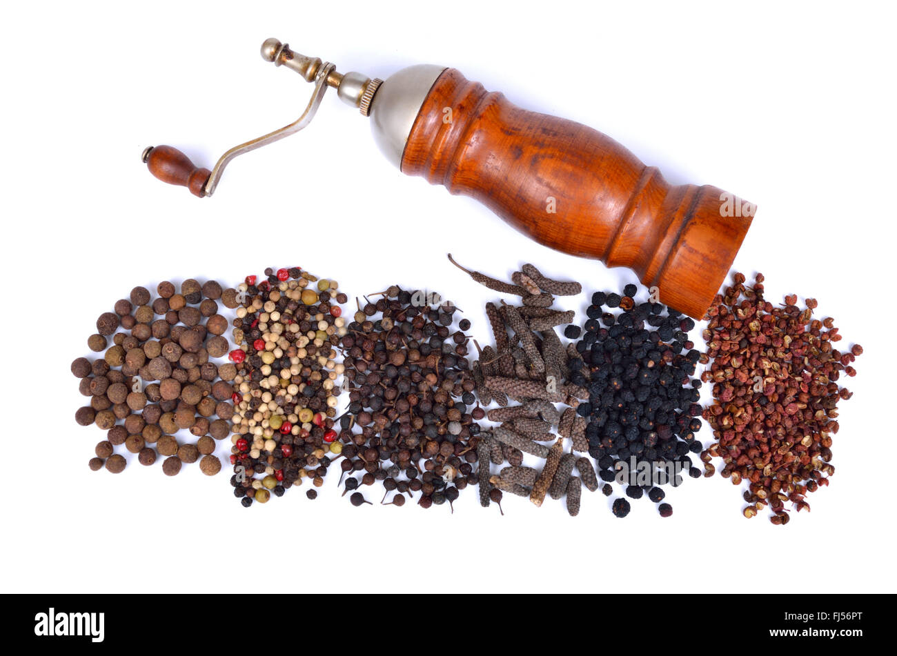 pepper mill with different kinds of pepper: pimento, coloured pepper, cubeb pepper, long pepper; Tasmanian pepper - Stock Image