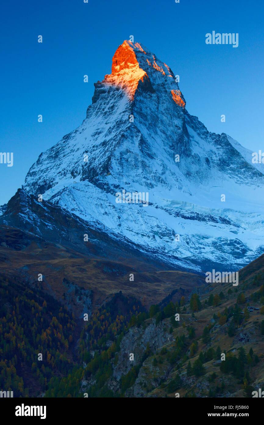 Matterhorn with alpenglow, Switzerland, Valais - Stock Image