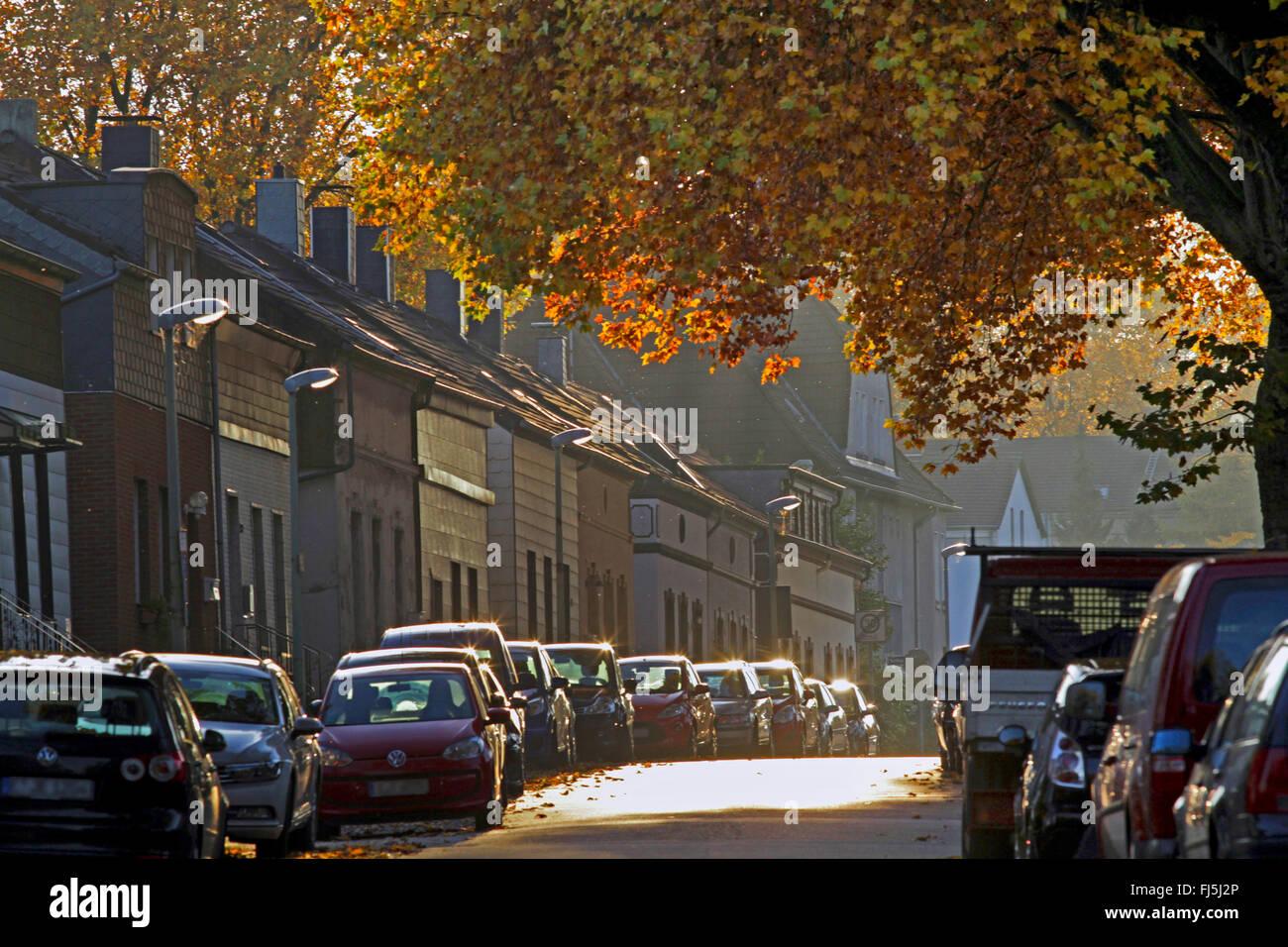 residental zone of miners in autumn, Essen Kray, Germany, North Rhine-Westphalia, Ruhr Area, Essen - Stock Image