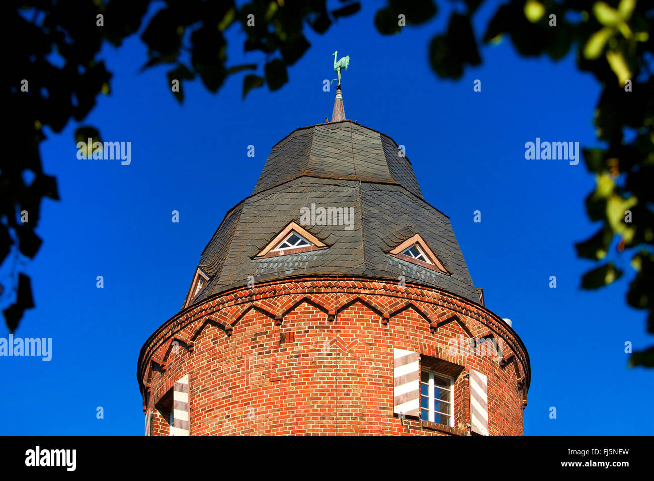 Muehlenturm with crane, heraldic animal of the town, Germany, North Rhine-Westphalia, Lower Rhine, Kranenburg - Stock Image