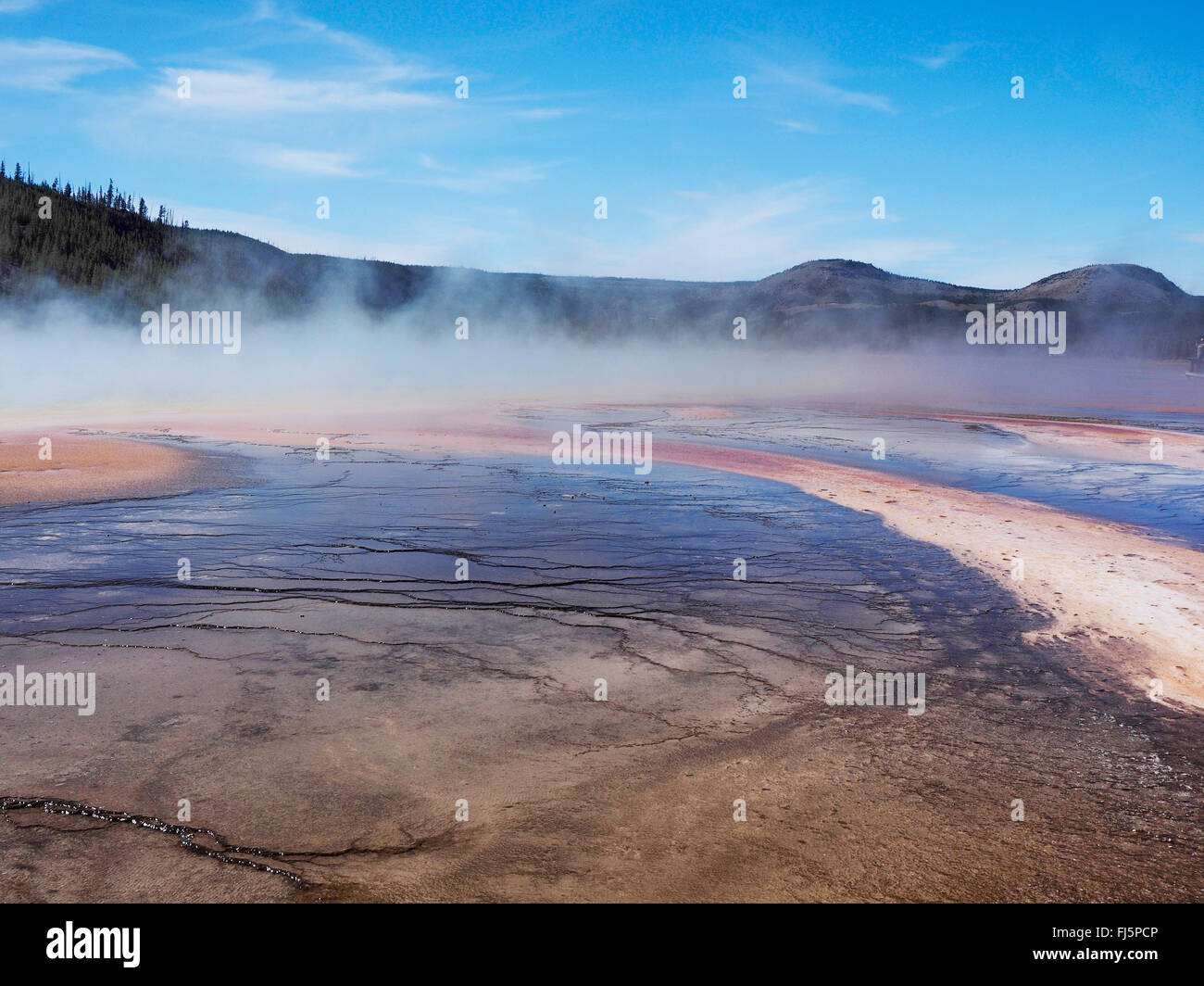 Grand Prismatic Spring, Midway Geyser Basin, USA, Wyoming, Yellowstone National Park - Stock Image