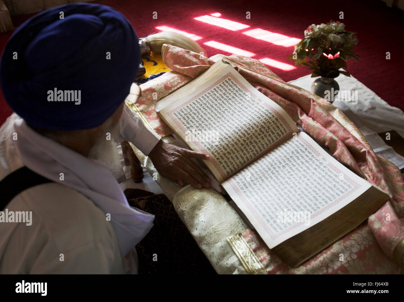 Sikh priest reading scripture, India - Stock Image