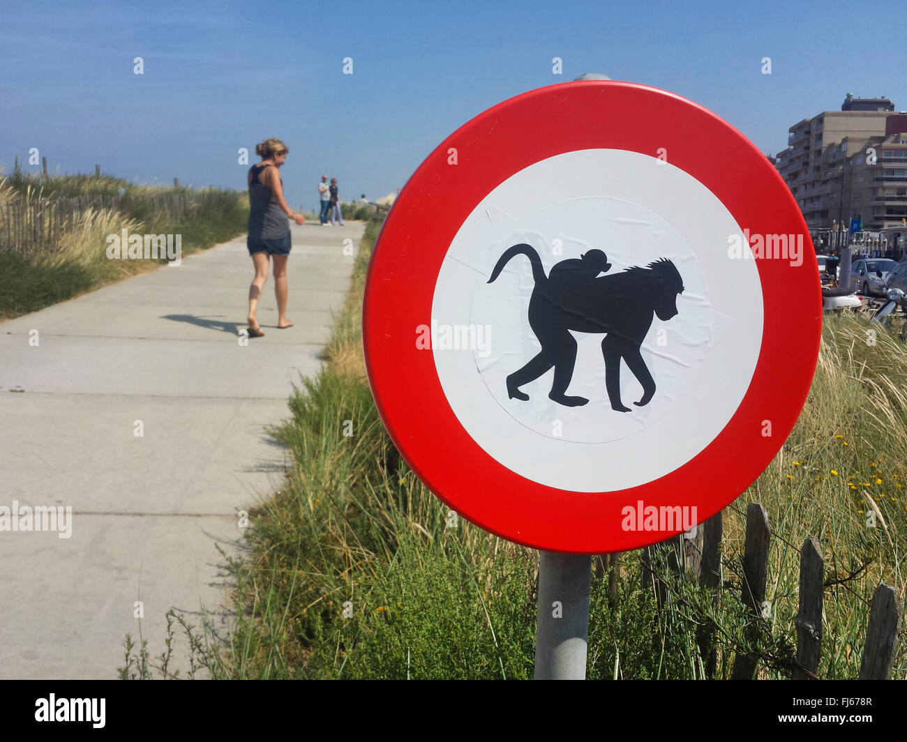 'no admission for apes' prohibition sign at path to the beach, Netherlands, Nordwijk - Stock Image