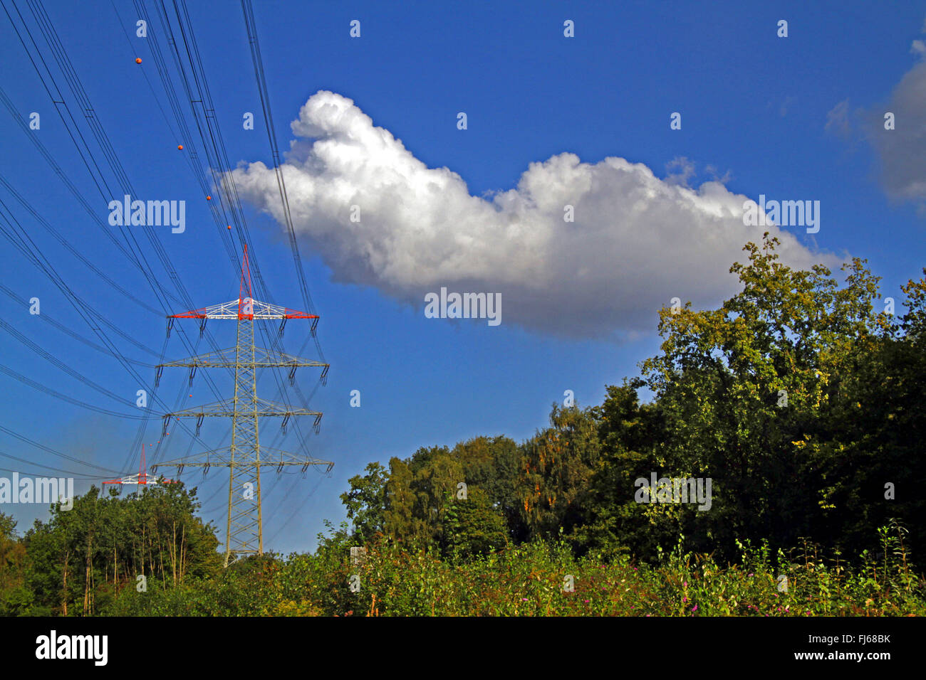 power transmission lines, Germany - Stock Image