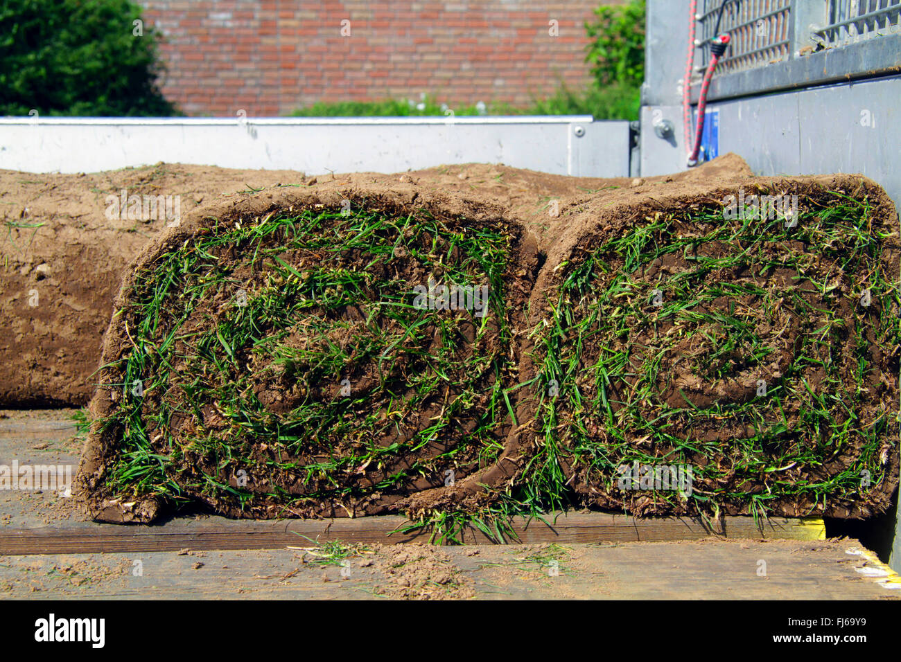 rolled sod on truck bed, Germany - Stock Image