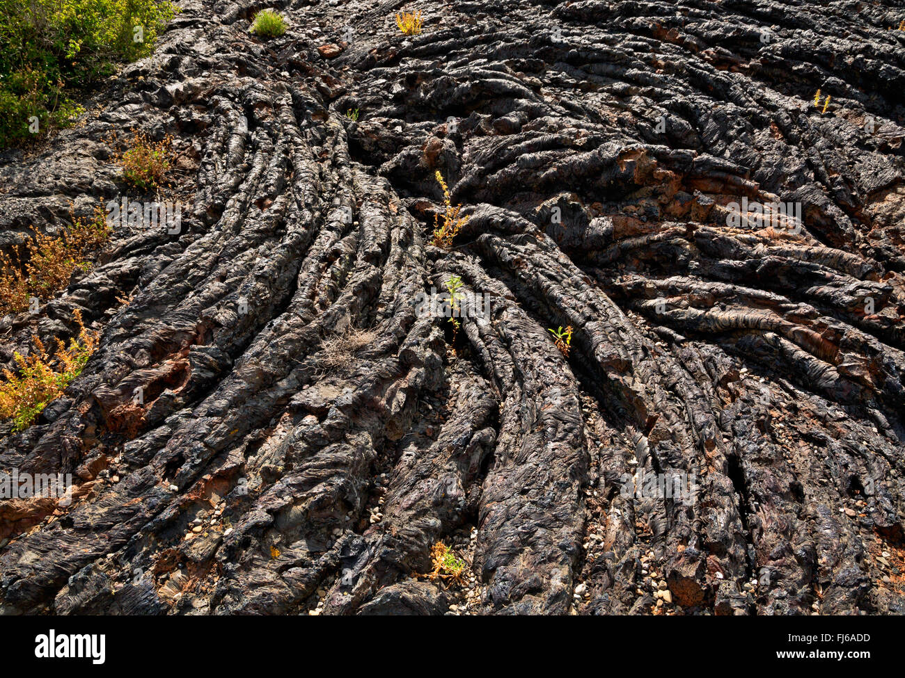 ID00480-00...IDAHO - Pahoehoe lava found along the North Crater Trail in Craters of the Moon National Monument and - Stock Image