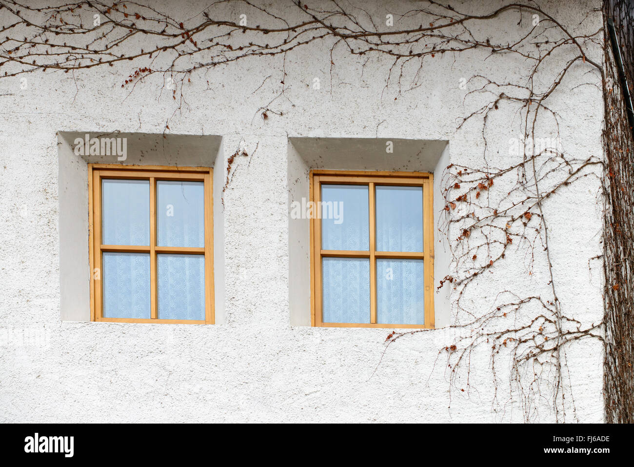 Hausmauer   house wall - Stock Image