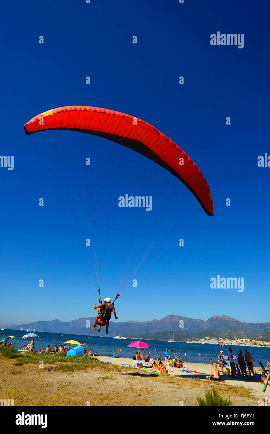 paraglider landing on the beach of Saint Florent, France, Corsica, Saint Florent - Stock Image