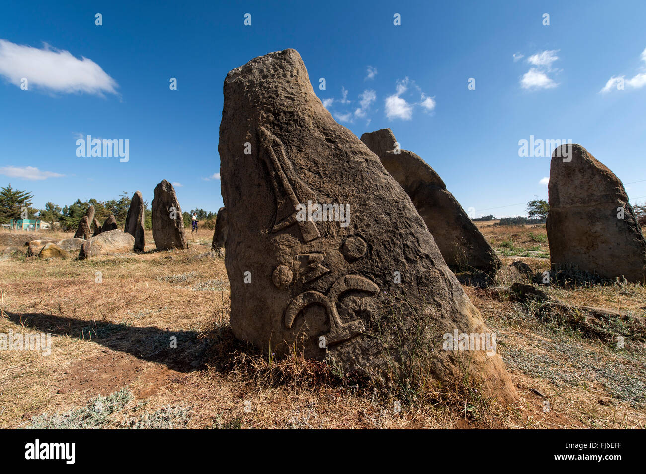 Carved Stelae (funerary monuments) Tiya Ethiopia, Africa Stock Photo