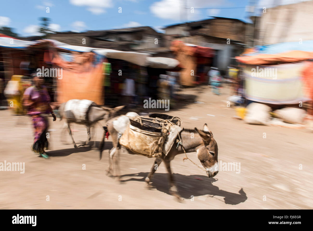 Local Market people trading Harar, Ethiopia, Africa - Stock Image