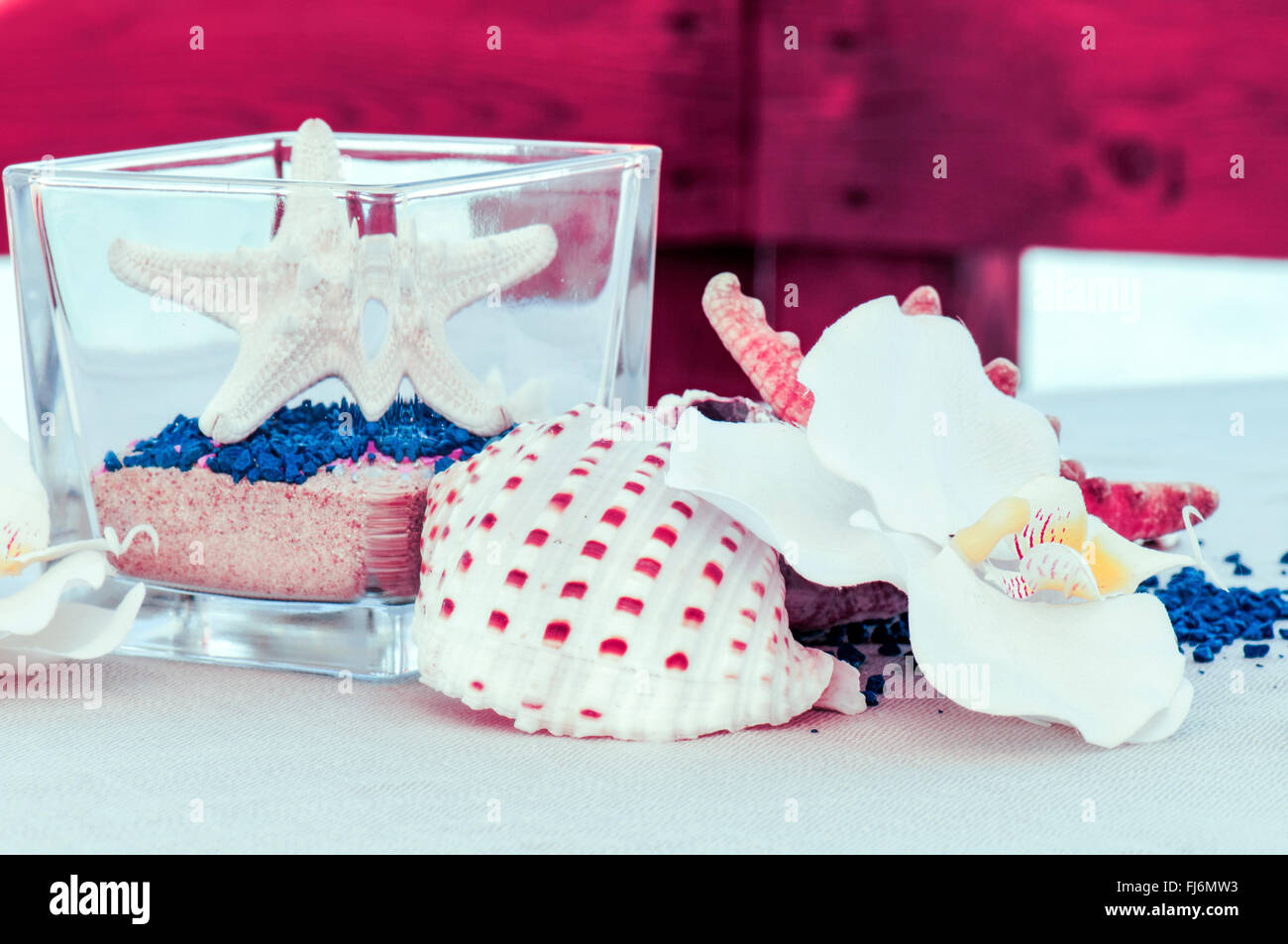 particular table set by the sea with starfish and shells - Stock Image