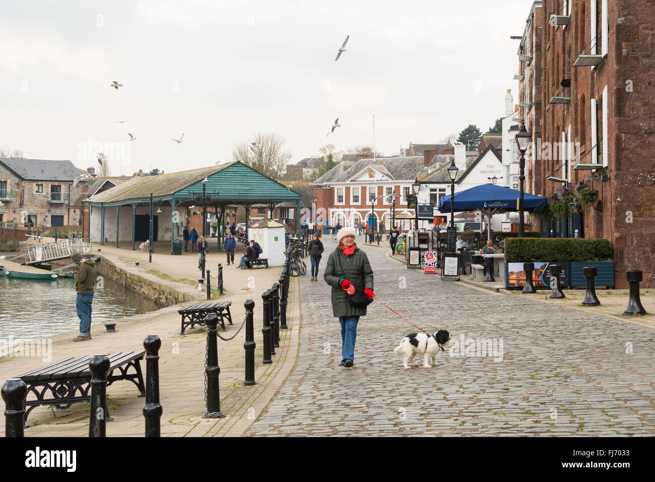 Exeter Quayside - a middle aged woman walking her dog along the side of the River Exe in winter - Stock Image