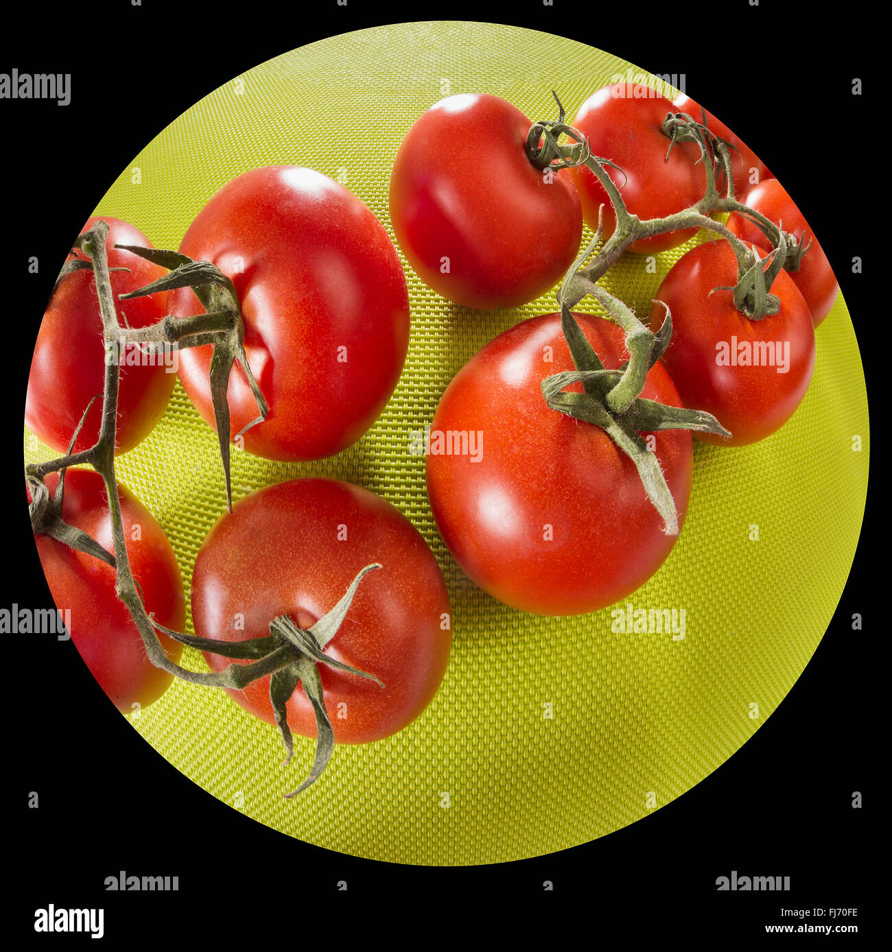Tomatoes on a green background, fisheye lens, wide angle lens distortion far, huge round red green, glossy, fresh - Stock Image